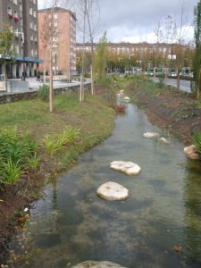 Vitoria-Gasteiz City Council  2015 / Restoring the riverbank wooded ecosystem along the Batán stream