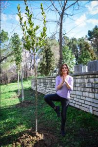 Donate a tree and Yoga on